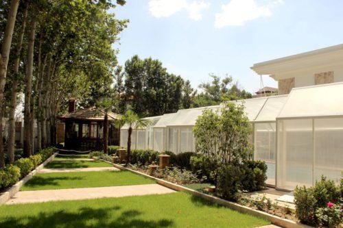 گیاهان محوطه و فضای سبز